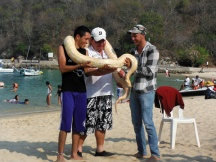 Guest on the beach-Huatulco